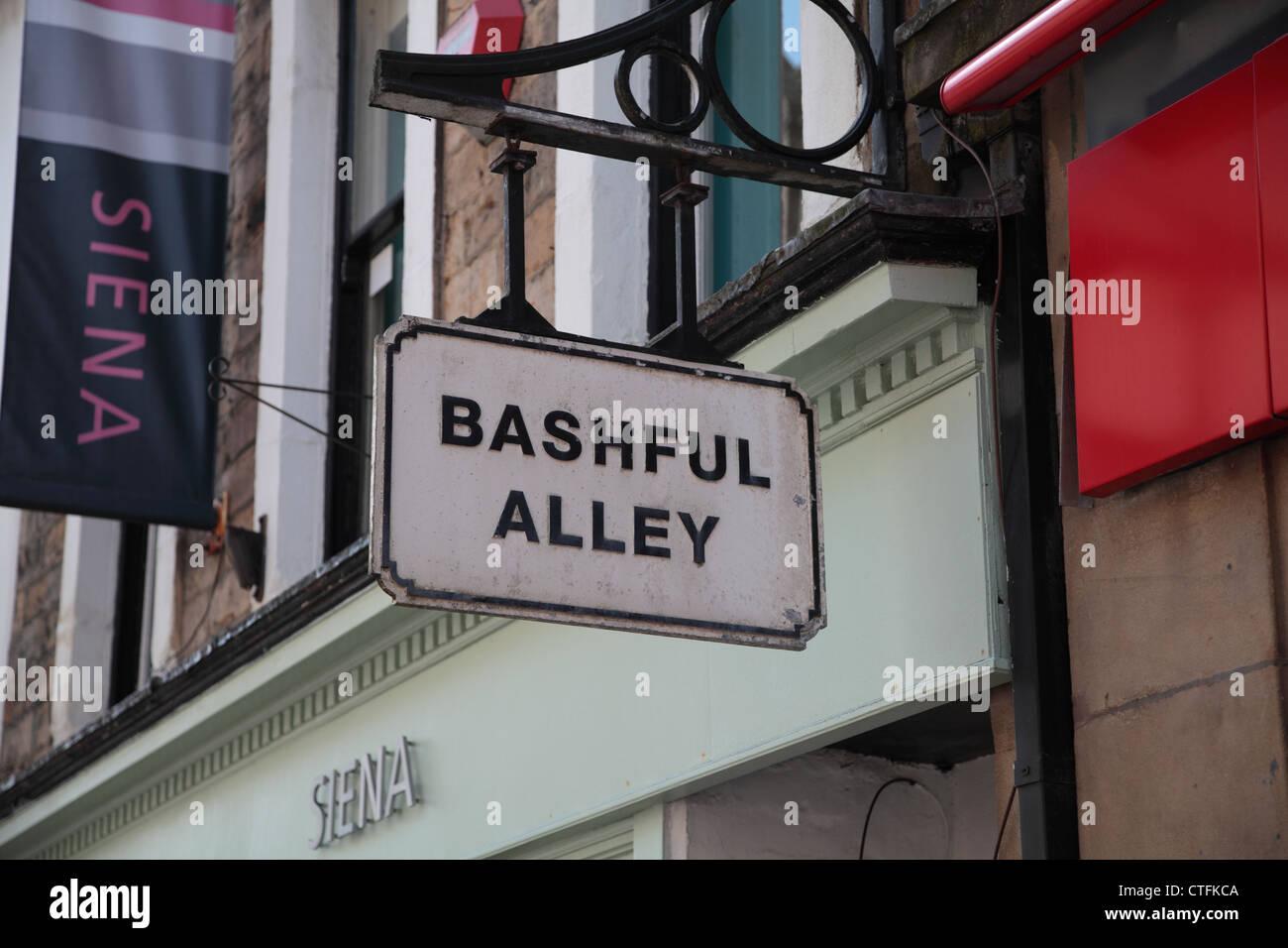 """Segno """"schivo Alley' sulla strada di città Immagini Stock"""