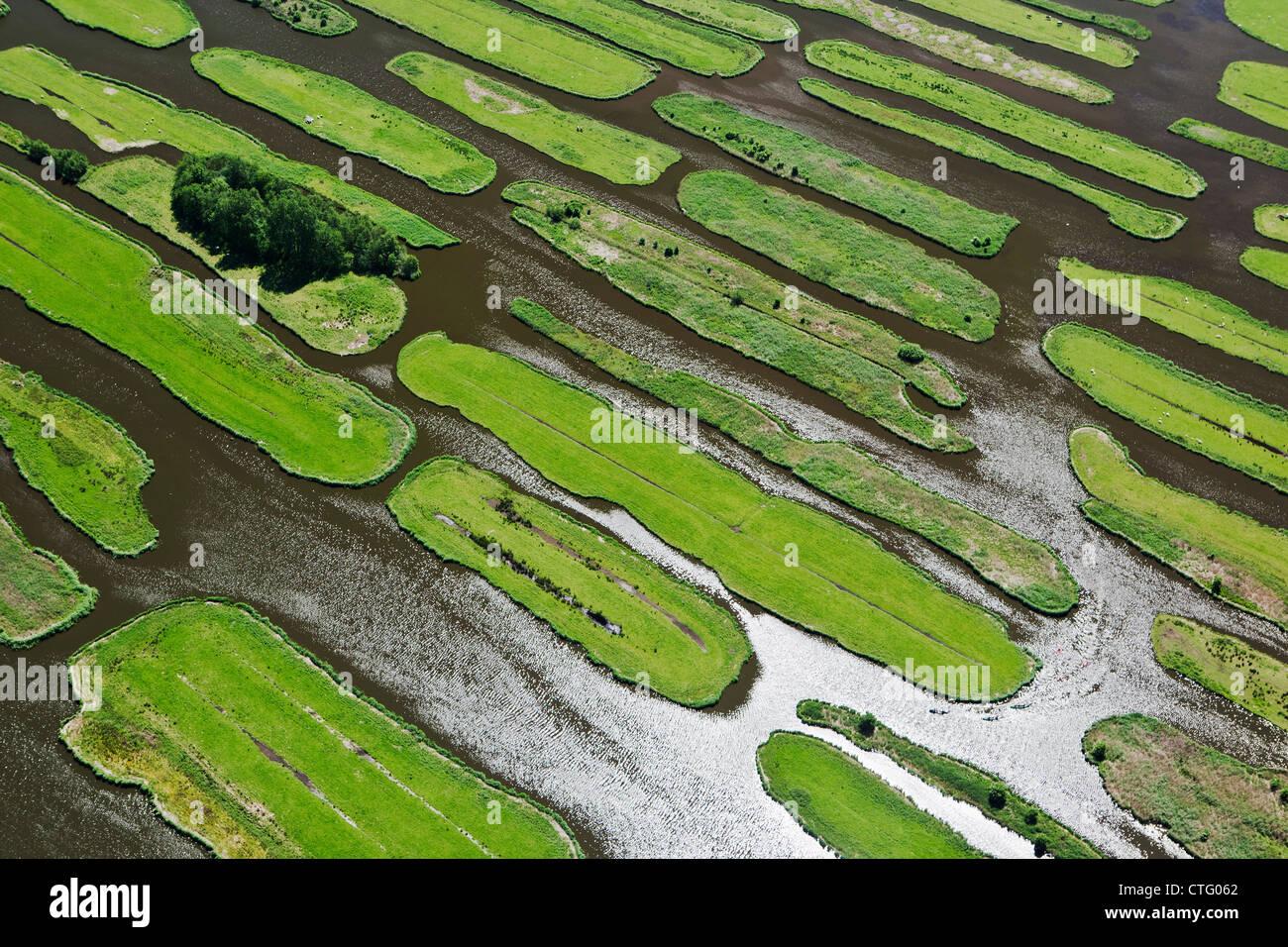 I Paesi Bassi, Jisp, antenna, paesaggio di polder. Immagini Stock