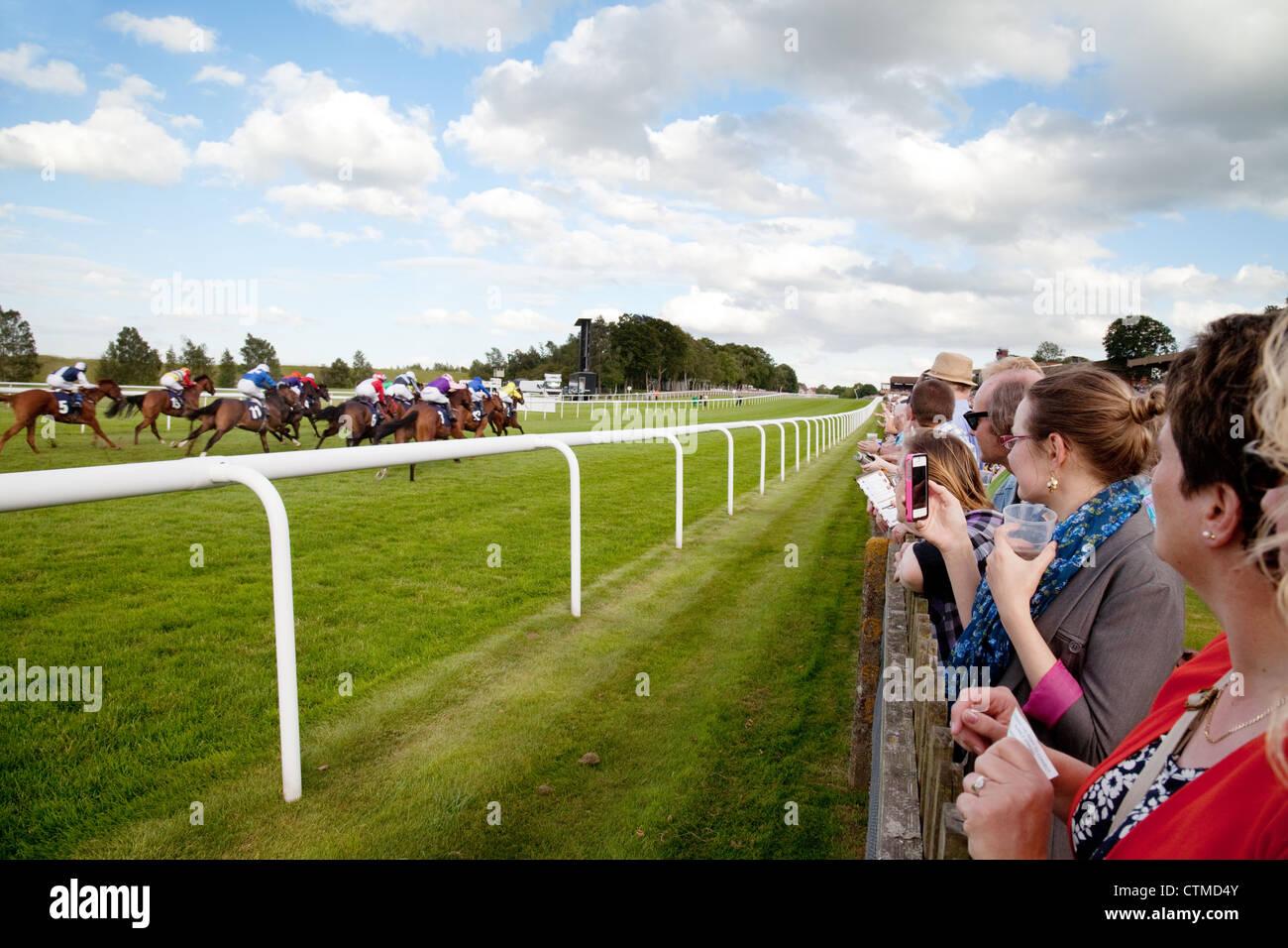 La gente a guardare le corse dei cavalli, Newmarket luglio racecourse, Newmarket Suffolk REGNO UNITO Immagini Stock