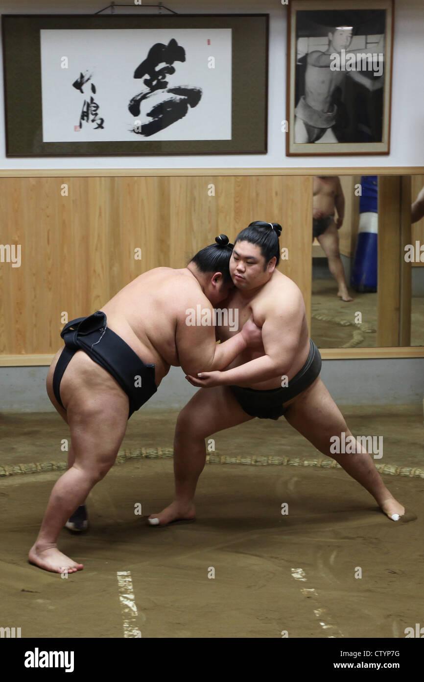 Lottatori di Sumo in Giappone durante una lotta Foto Stock