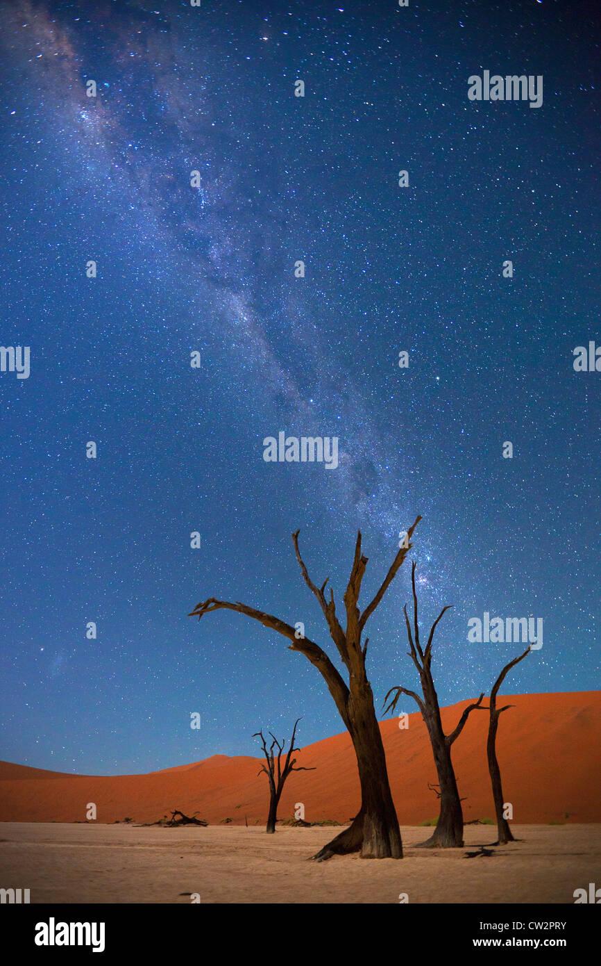 La Via Lattea su Dead Vlei,Soussvlei,Namibia Immagini Stock