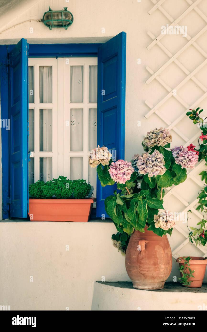 Una finestra con persiane blu e ortensie Immagini Stock