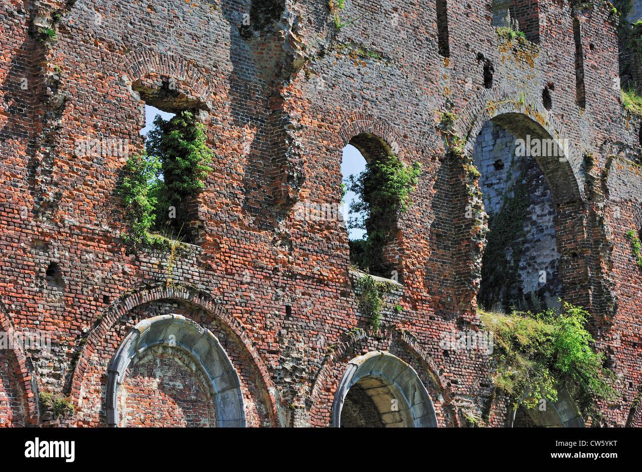 Parete in mattoni rossi tra le rovine dell'abbazia di Aulne, un monastero cistercense a Thuin, Hainaut, Belgio Immagini Stock