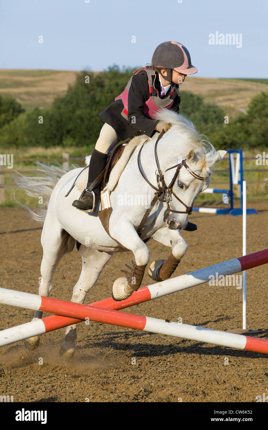 Un cavallo e cavaliere saltando da un recinto durante un show jumping concorrenza Immagini Stock