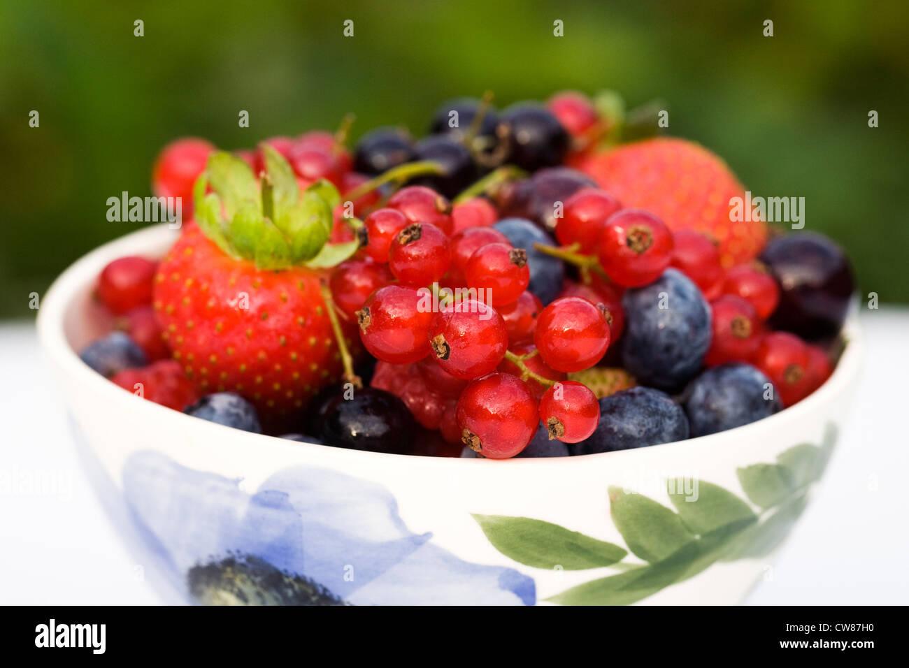 Estate colorati frutti di bosco in una ciotola. Immagini Stock
