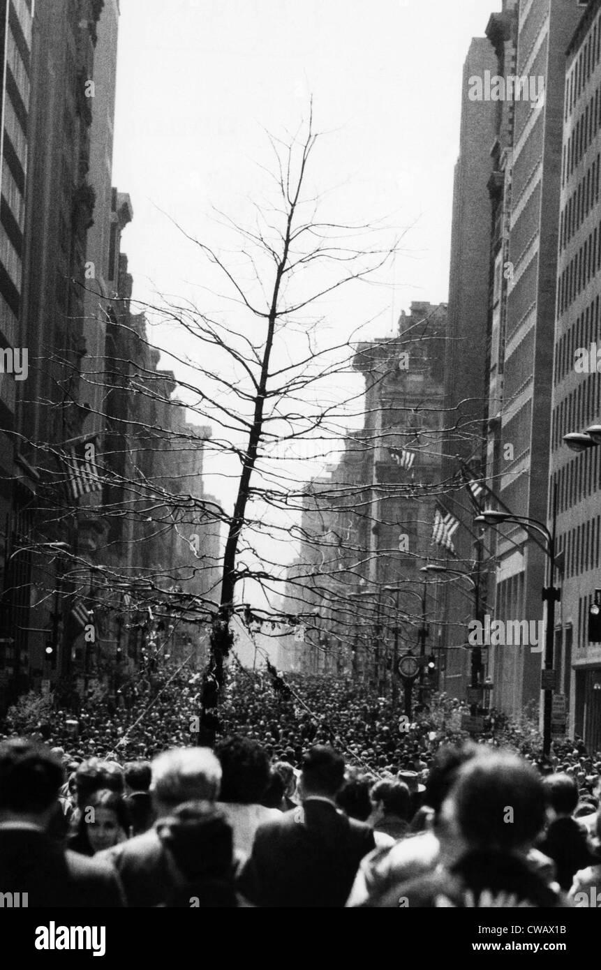 Un gruppo di dimostranti portano un albero sulla Quinta Avenue, come parte della Giornata della Terra. La città Immagini Stock