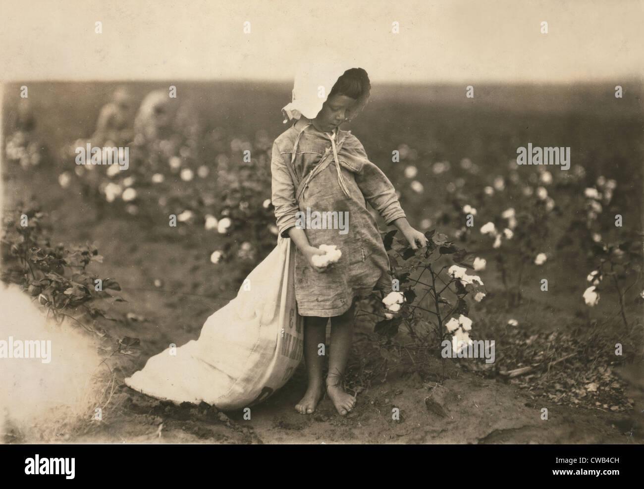 Il lavoro minorile, una giovane ragazza la raccolta del cotone, Vera Hill, 5 anni raccoglie 25 libbre al giorno, Immagini Stock