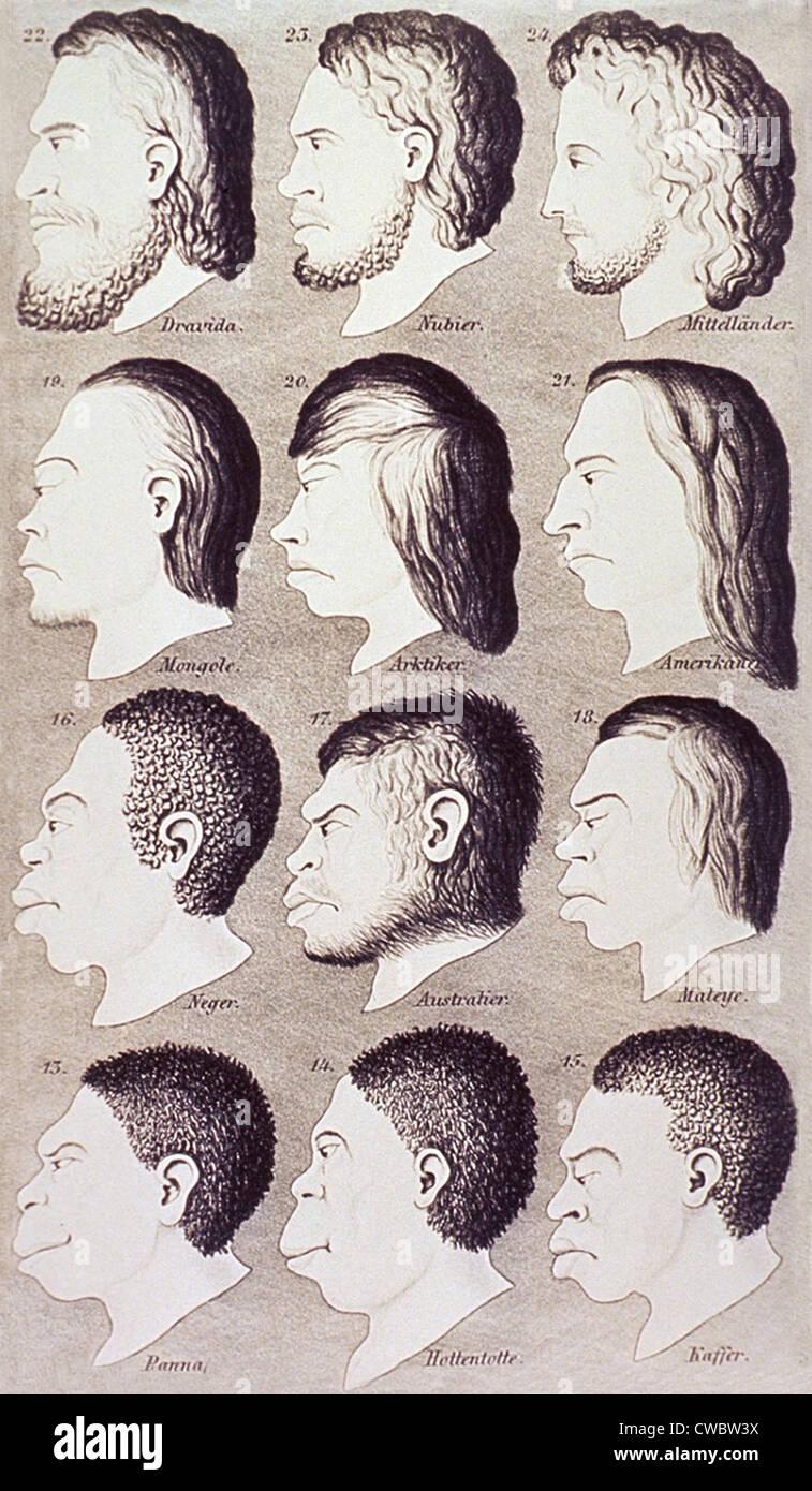Una serie di teste umane dalla differenza di razze e etnie sviluppare progressivamente da un caucasico idealizzato Immagini Stock