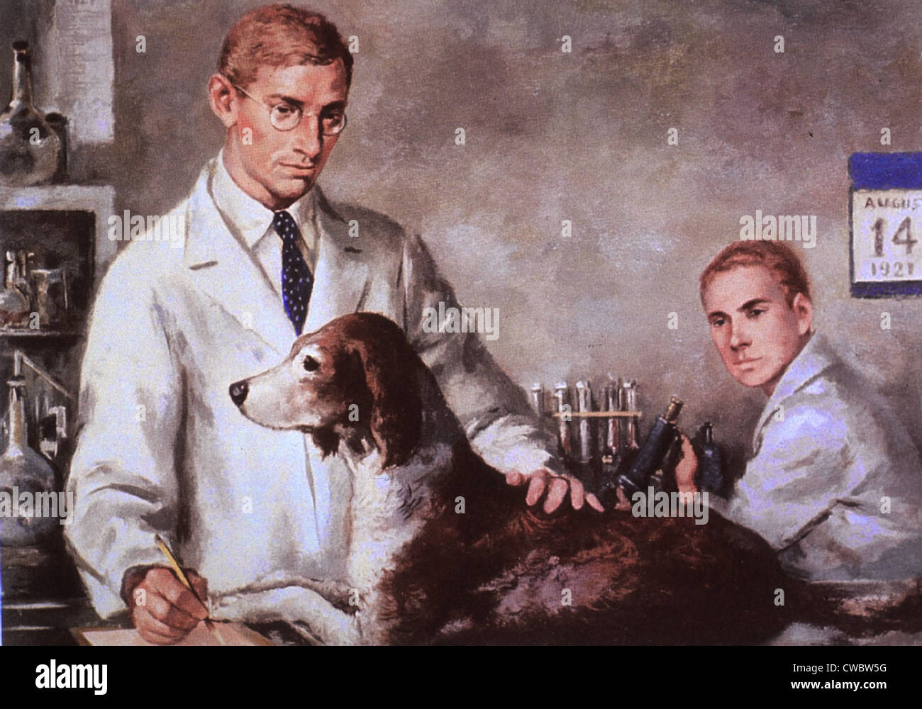 Frederick Banting e Charles Best, con un cane diabetico hanno mantenuto vivo attraverso iniezioni di ormone insulina. Immagini Stock