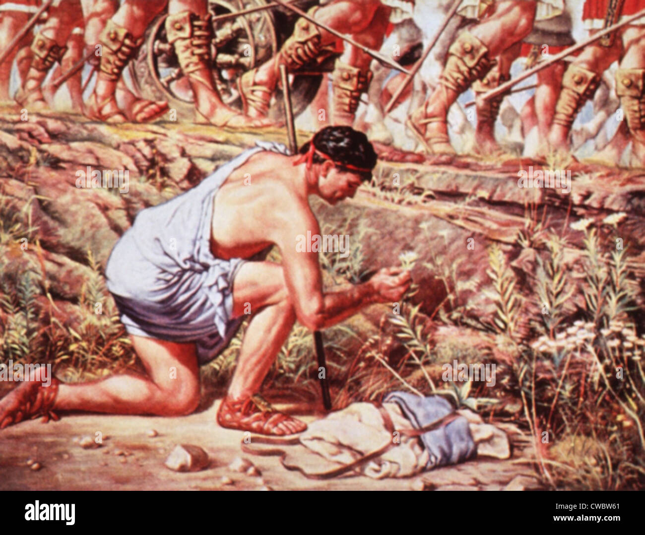 Pedanius Dioscoride (40-90 AD), botanico greco e farmacologo, lo studio delle piante mentre accompagna eserciti Immagini Stock