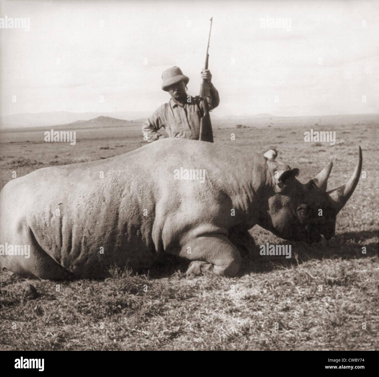 L ex Presidente Theodore Roosevelt, in Africa in piedi dietro morti rhino e azienda rifle ca. 1909. Immagini Stock