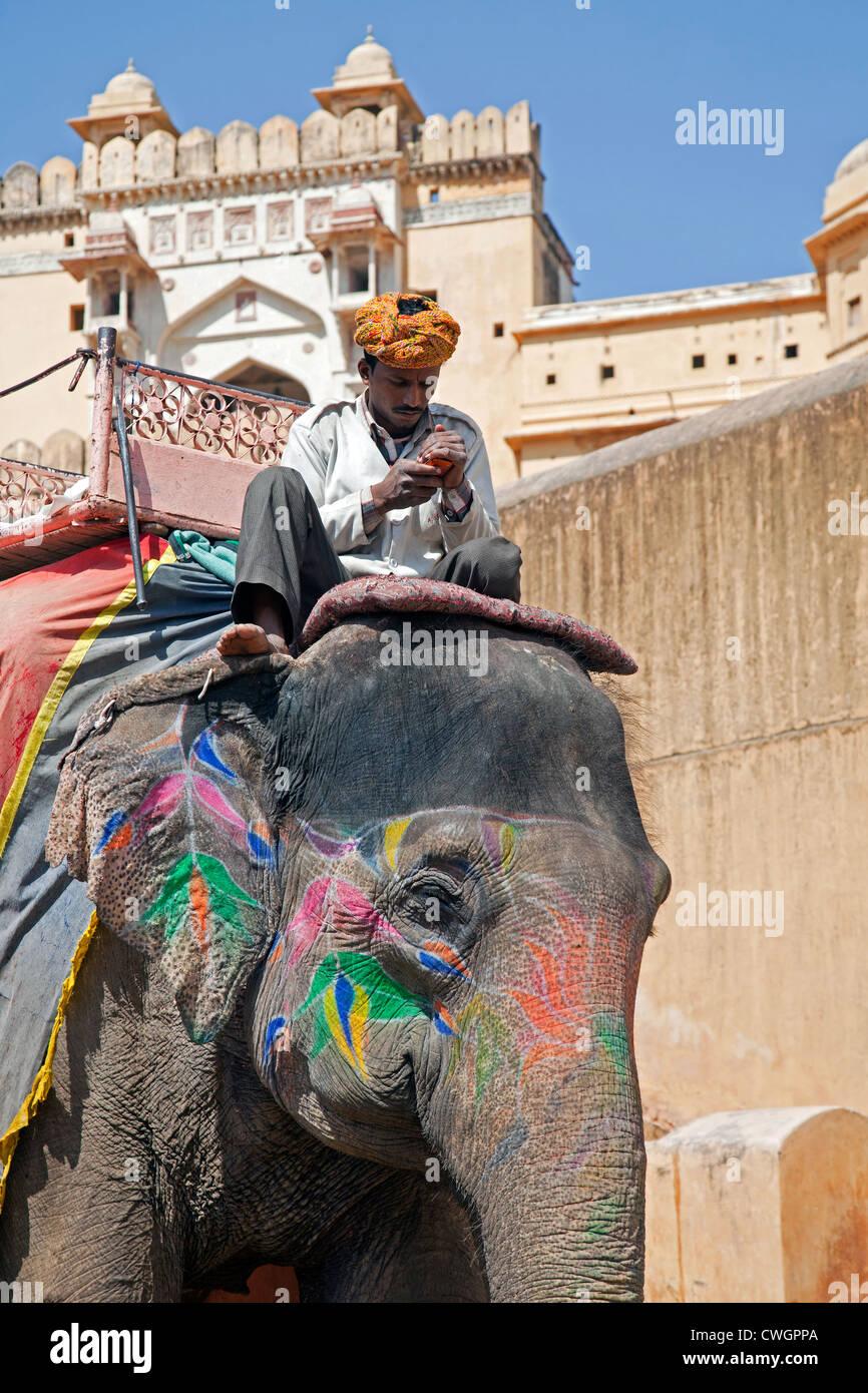 Mahout decorate di equitazione elefante indiano per il trasporto di turisti in Forte Amer / Ambra Fort vicino a Immagini Stock