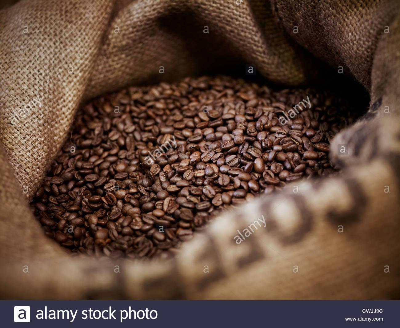 I chicchi di caffè nel sacco di tela Immagini Stock