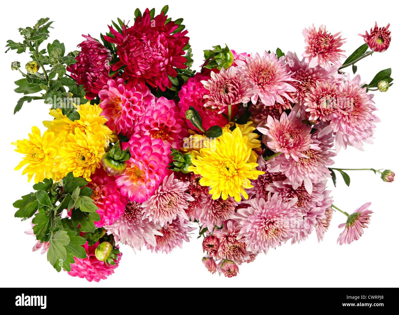 Ottimo bouquet di fiori autunnali isolato su bianco foto for Immagini fiori autunnali