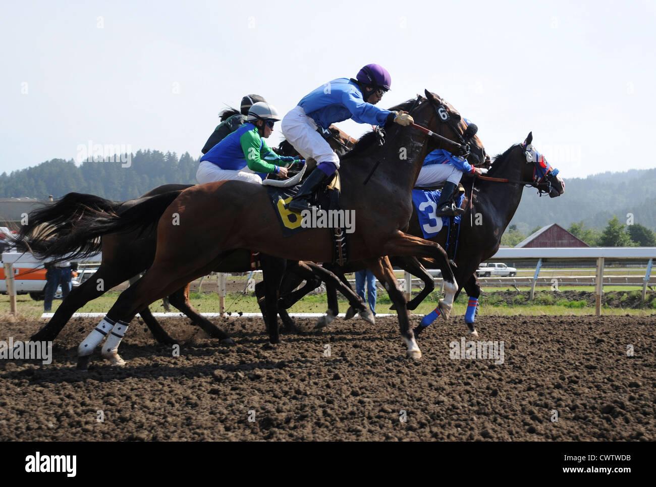 Corse di cavalli alla Humboldt County Fairgrounds in Ferndale, California Immagini Stock