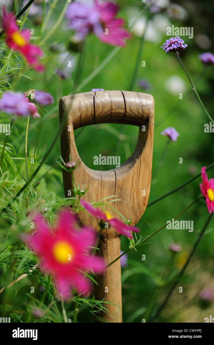 In legno maniglia a forcella tra estate fiore confine Foto Stock