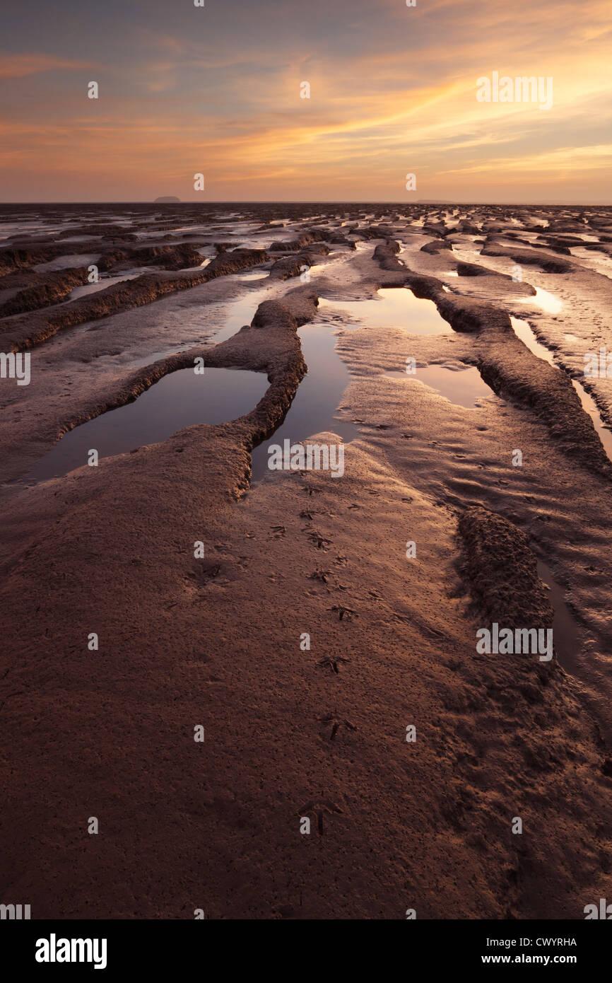 Orme di trampolieri sulle velme nella baia di sabbia vicino a Weston-super-Mare. Somerset. In Inghilterra. Regno Immagini Stock