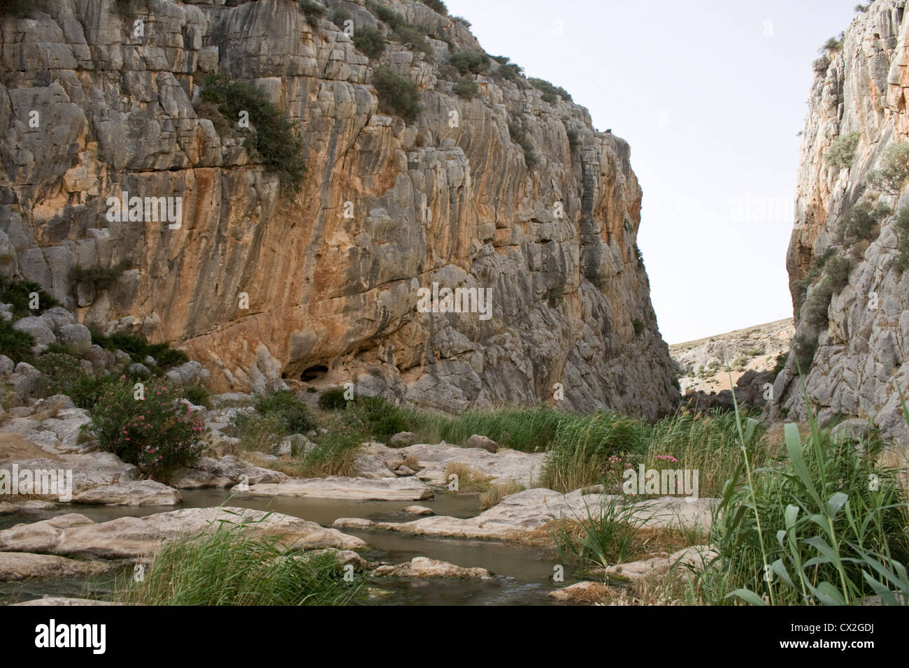 Teba Gorge in Andalusia Spagna, un buon posto per il bird-watching. Immagini Stock