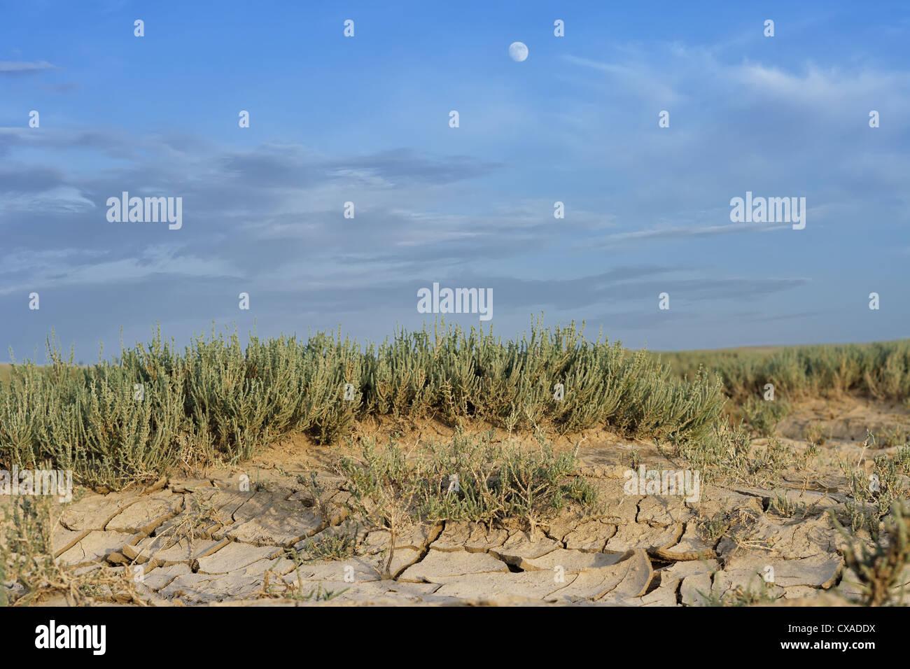 Arido, sfondo blu, clima, i cambiamenti climatici, incrinato deserte, essiccato, disaster, siccità, secco, Immagini Stock