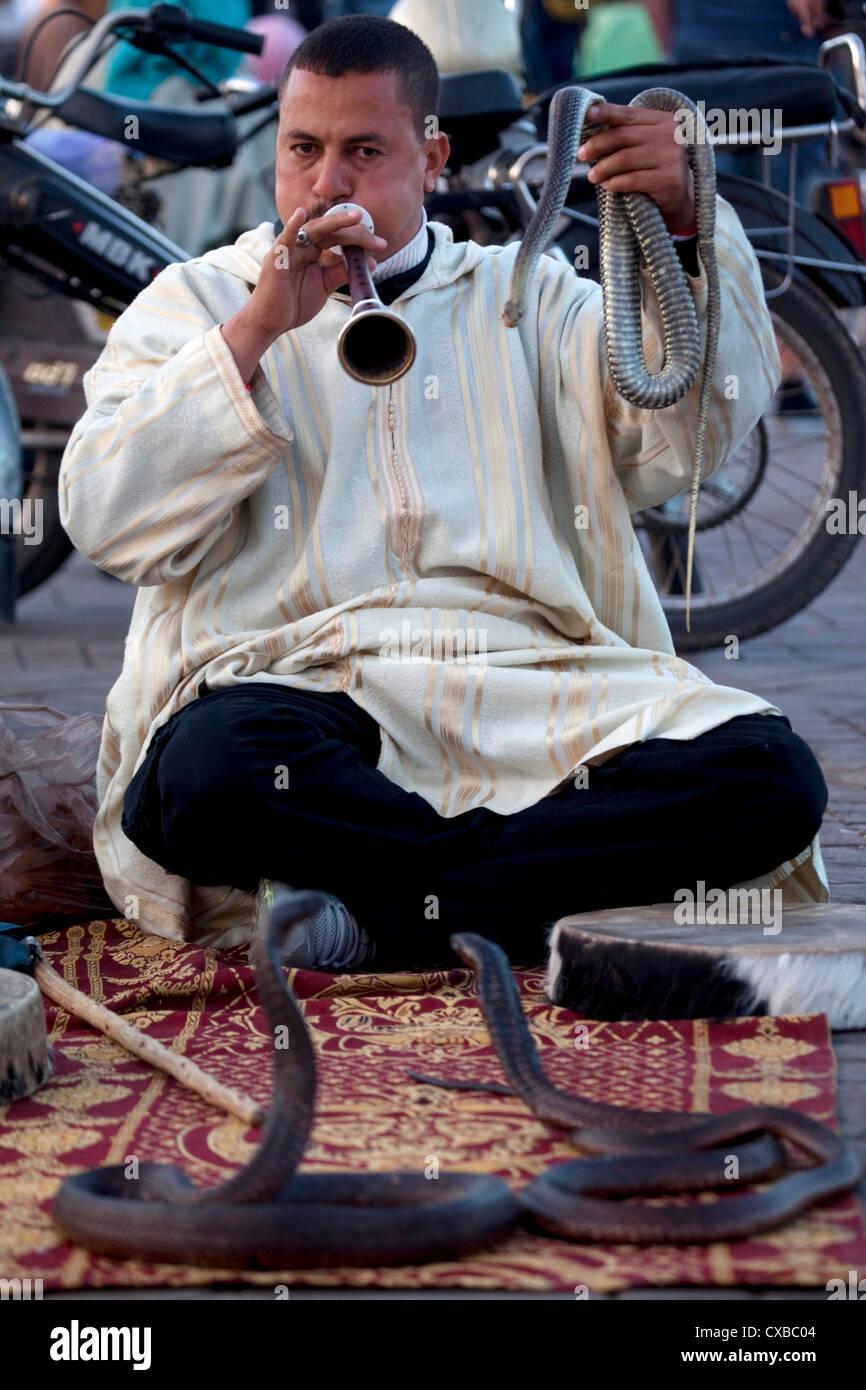 Il serpente incantatore, Piazza Jemaa El Fna a Marrakech, Marocco, Africa Settentrionale, Africa Immagini Stock
