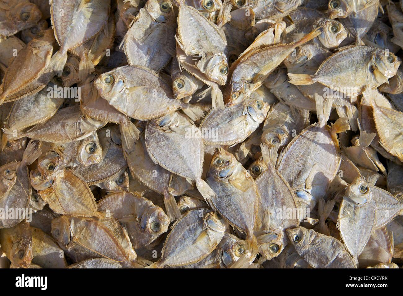 Pesci secchi per la vendita sul mercato, di stallo Nilaveli, Trincomalee, Sri Lanka, Asia Immagini Stock