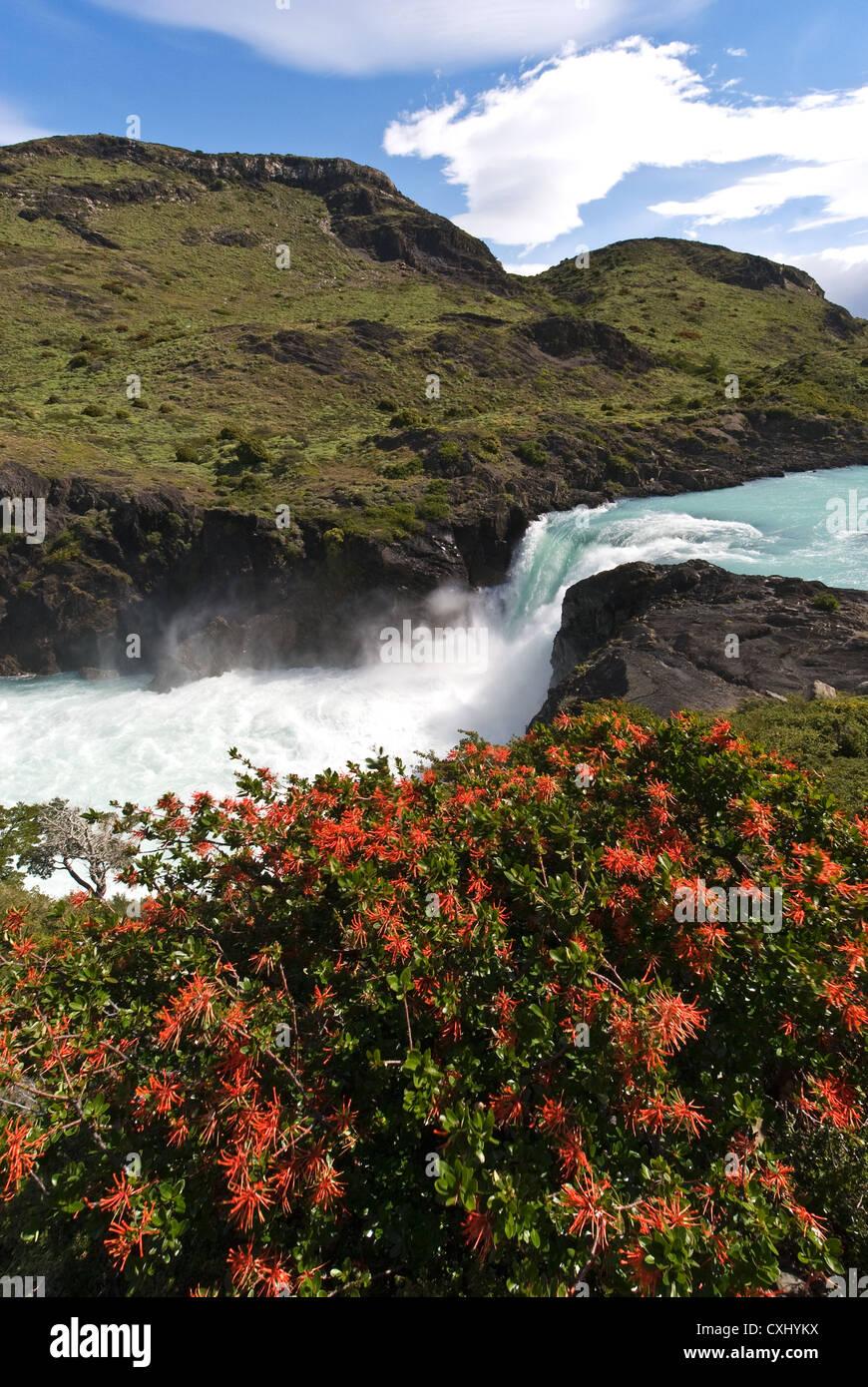 Elk198-4451v Cile, Parco Nazionale Torres del Paine, Salto Grande Cascata Immagini Stock