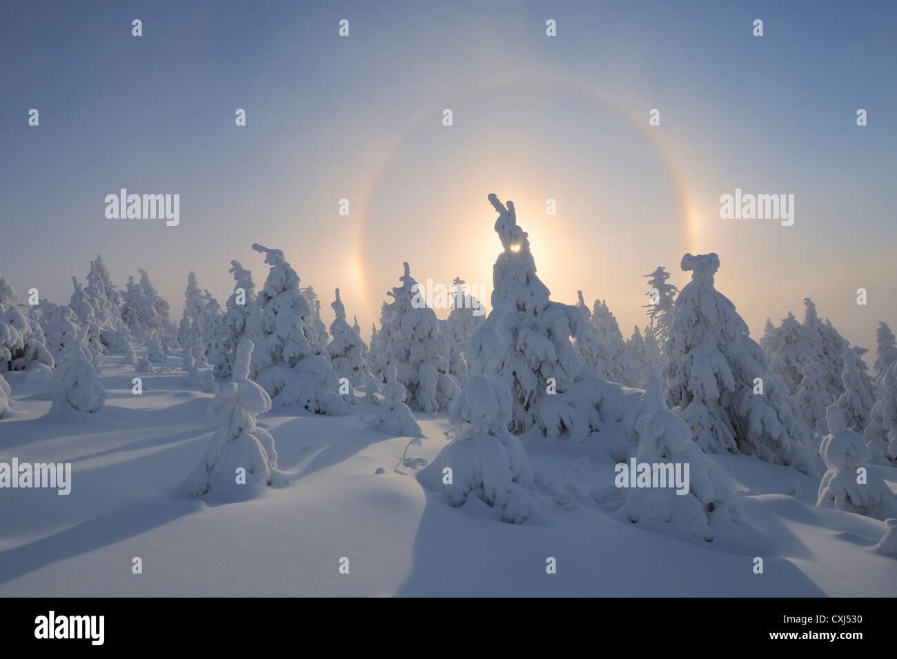 In Germania, in Sassonia, in vista di sundog con paesaggio innevato Foto Stock
