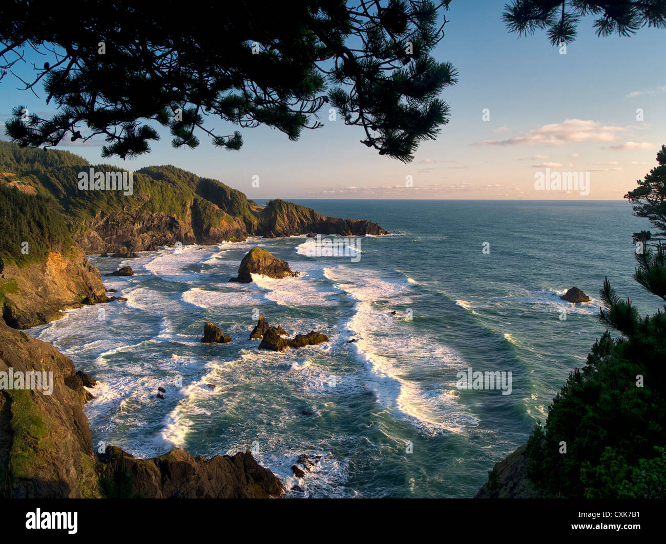 Struttura a sbalzo e surf a Samuel H. Boardman membro Scenic corridoio. Oregon Immagini Stock