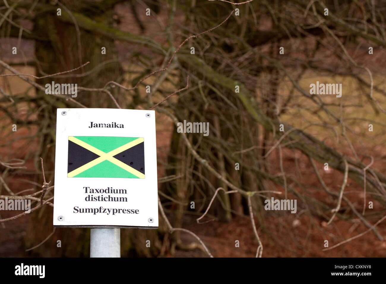 Segno con la bandiera nazionale e un albero di stati di Germania ha relazioni diplomatiche con, Giamaica, Calvo Immagini Stock