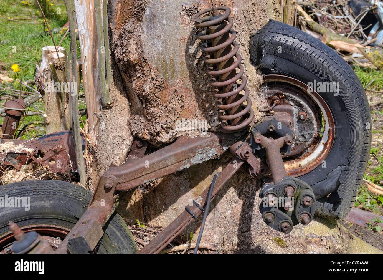 Natura e tecnologia, auto assale e ruote, parzialmente ricoperta da un salice tronco, Miesbach, Alta Baviera, Baviera Immagini Stock