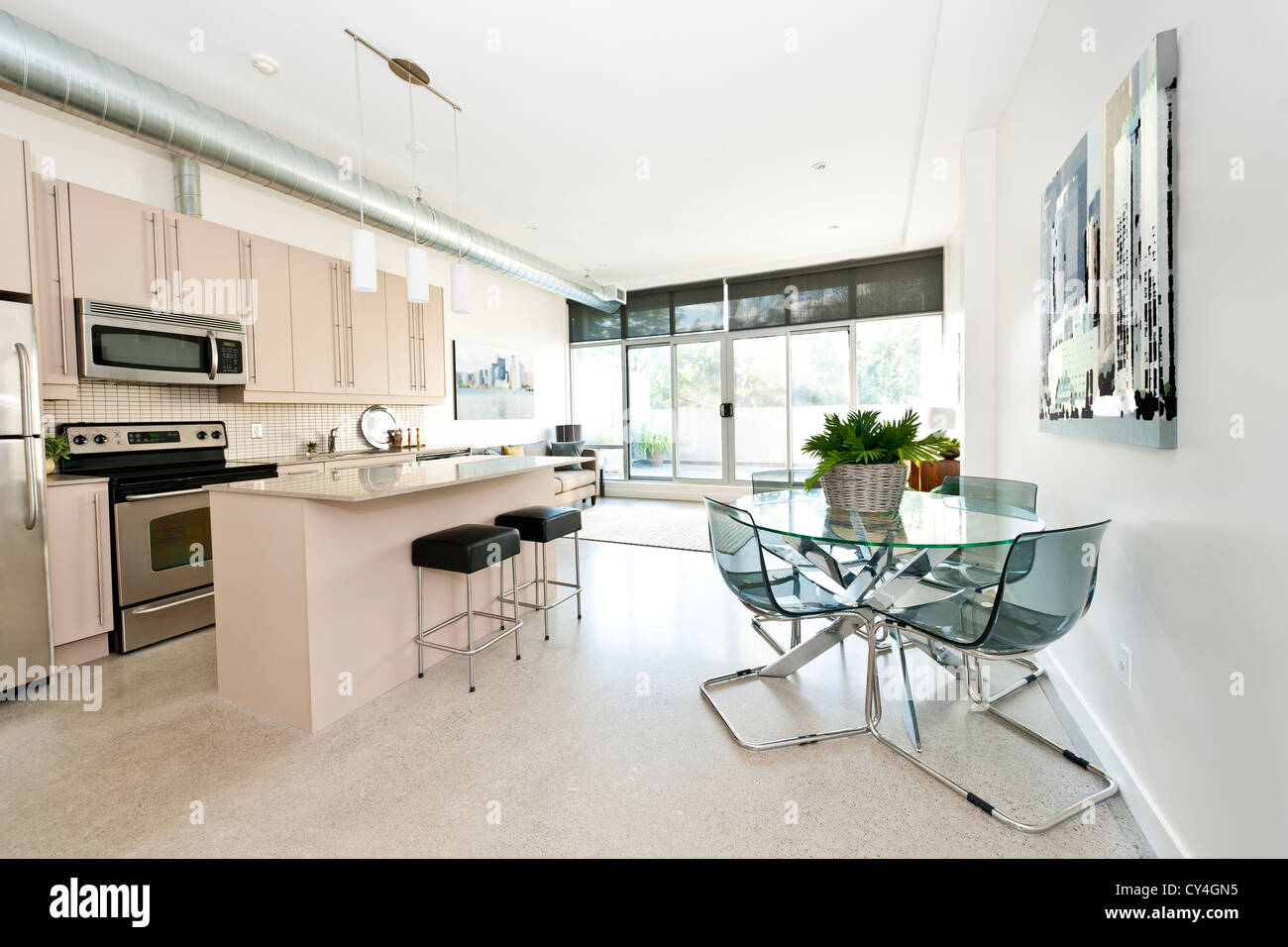 Cucina e sala da pranzo e soggiorno di appartamento - grafica dal fotografo portfolio Immagini Stock