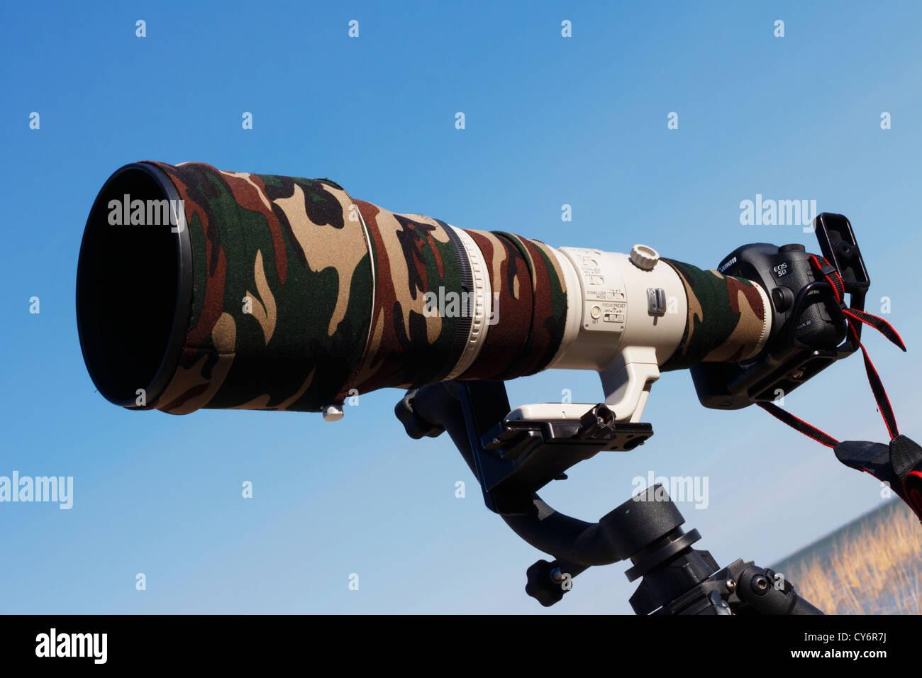 Canon 800mm f/5.6 super teleobiettivo e DSLR montato su di una sospensione cardanica di testa. Immagini Stock