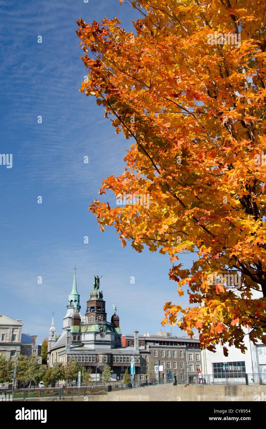Canada Quebec, Montreal. Caduta delle Foglie Visualizza storico di Marguerite Bourgeoys Museum & 300-anno vecchia Immagini Stock