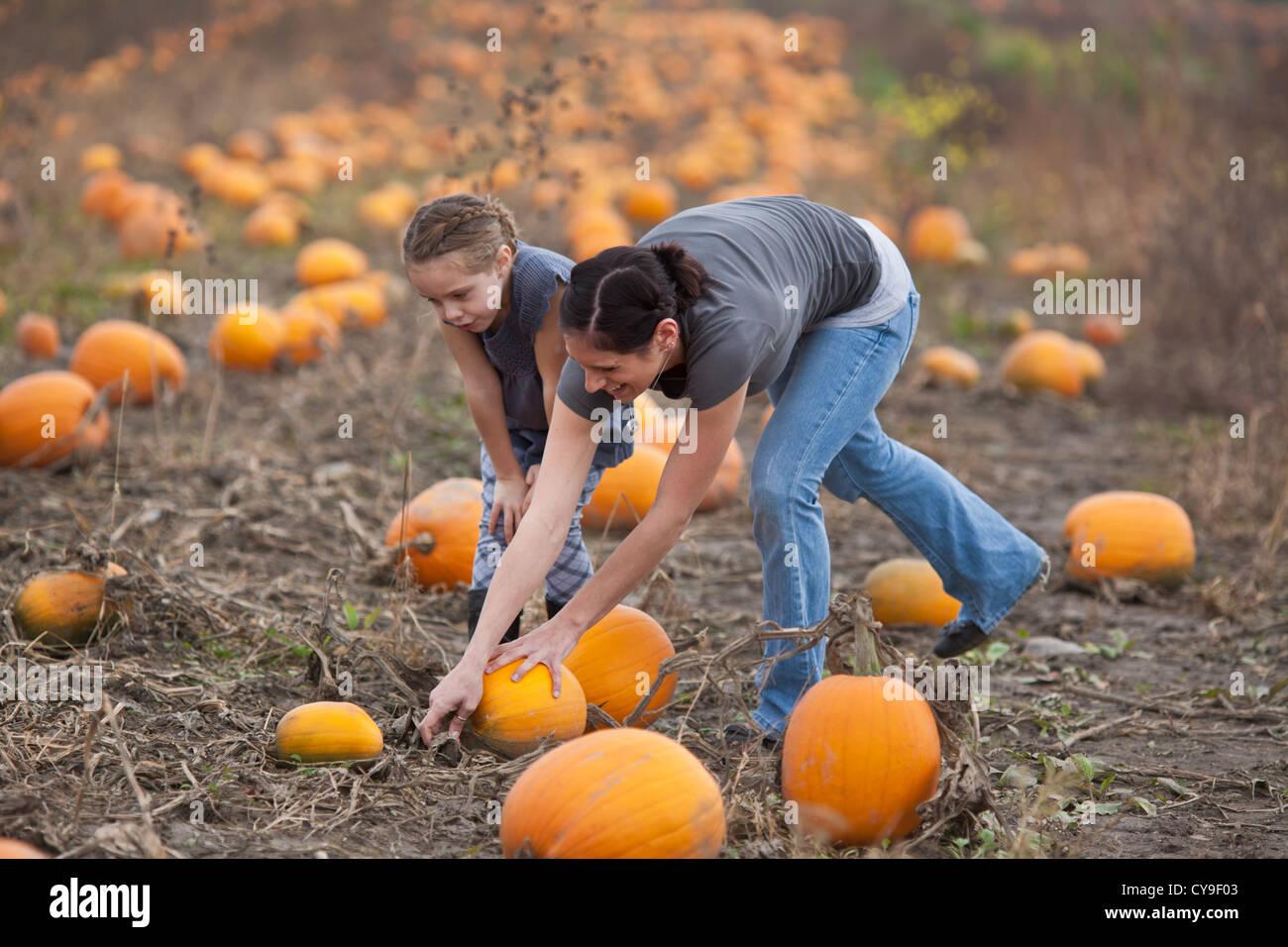 Madre e figlia Raccolta zucche, pick-vostro-fattoria in Upstate New York, Mohawk Valley Foto Stock