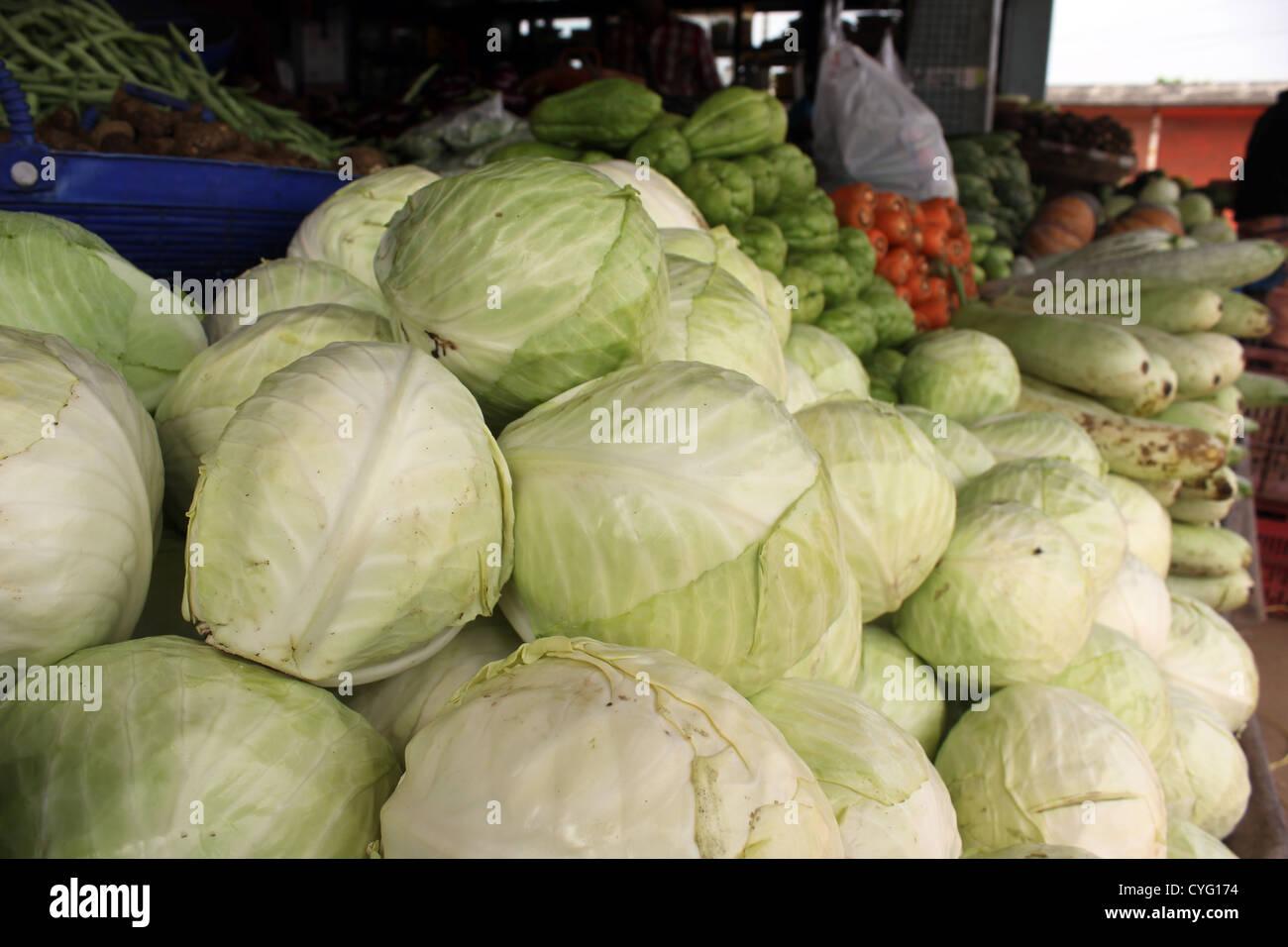 Cavolo che viene visualizzata in un negozio di vegetali in India Immagini Stock