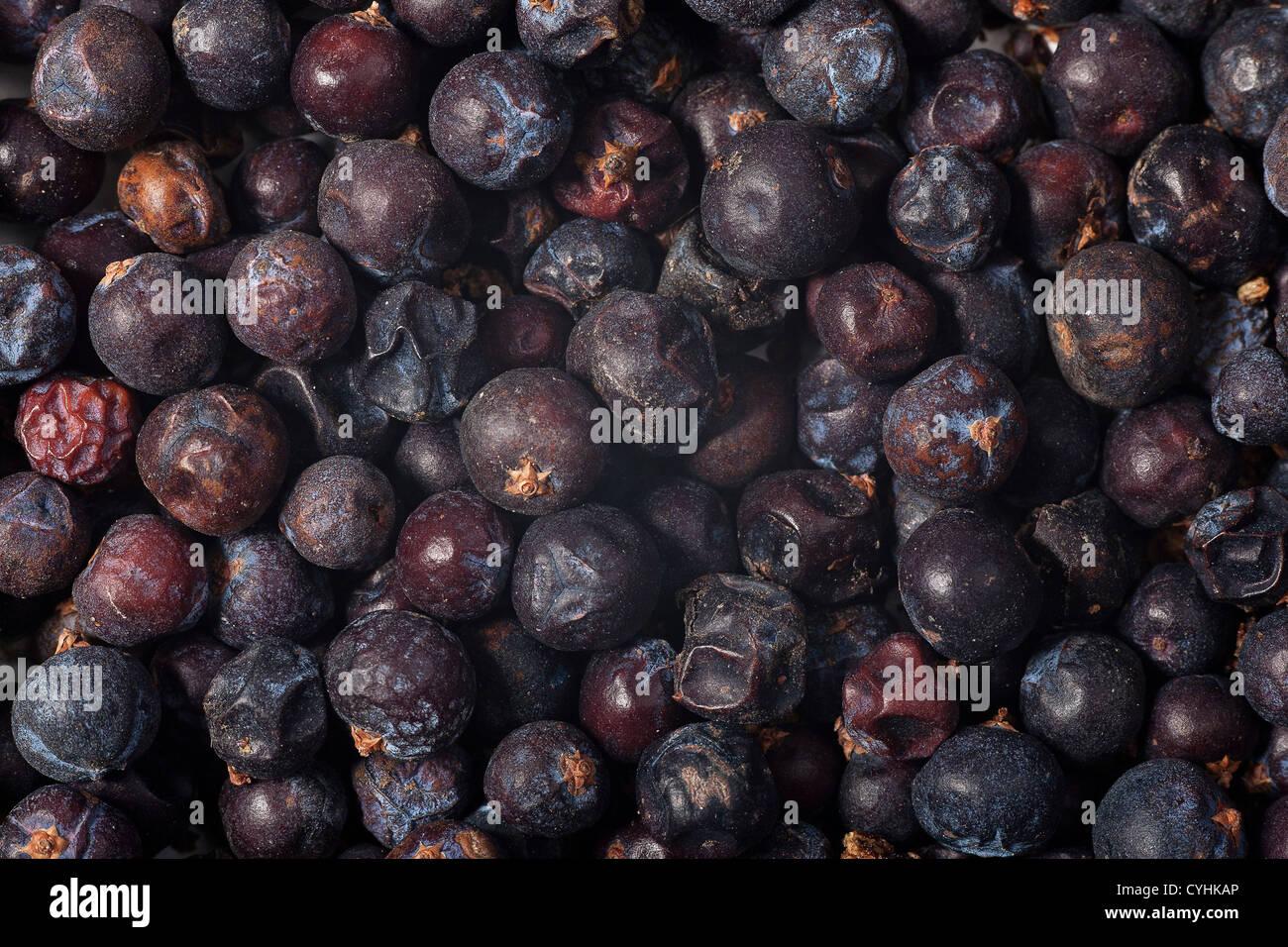 Ginepro essiccato berry closeup sfondo Immagini Stock