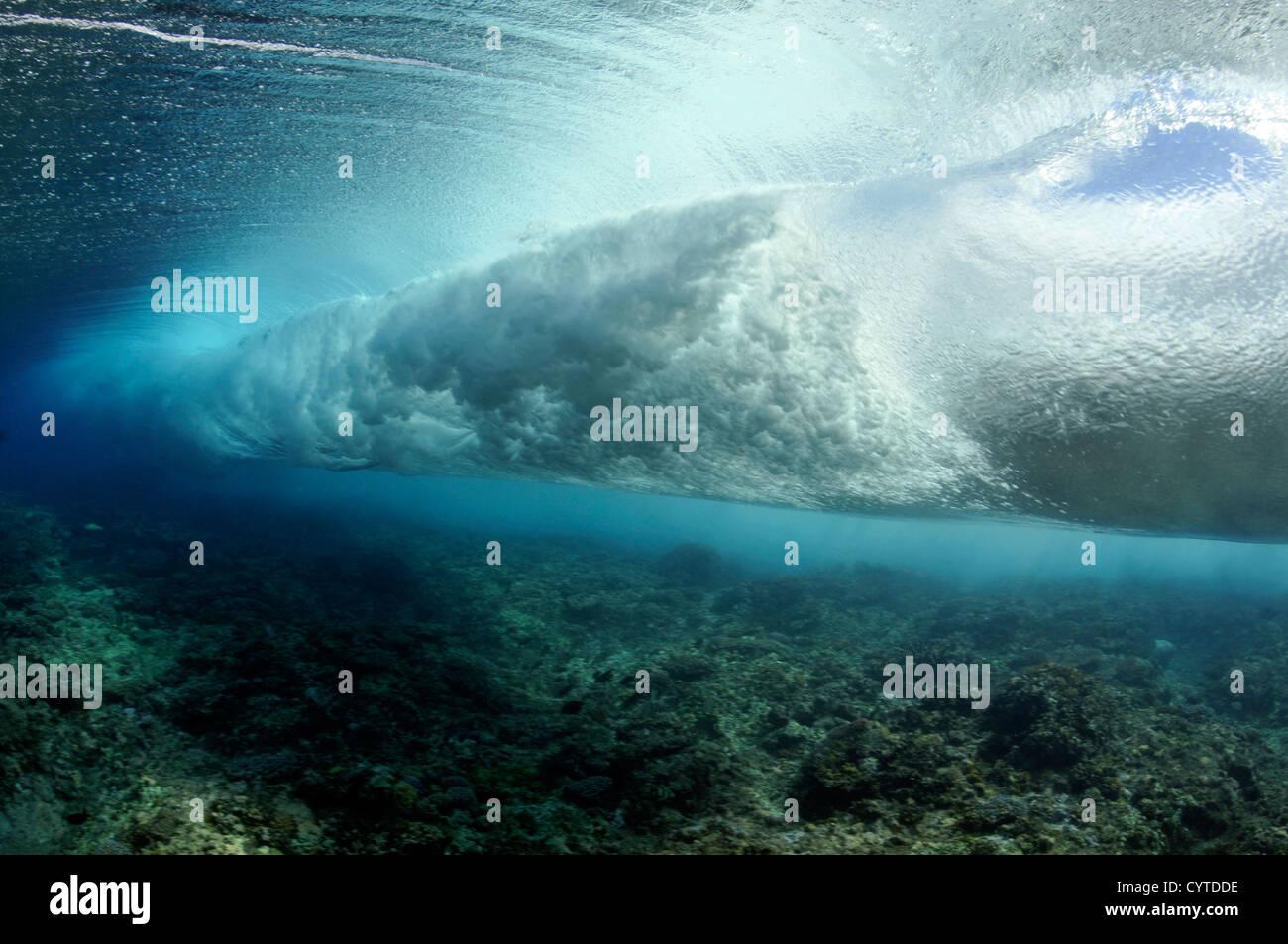 Onde che si infrangono sulla barriera corallina, visto da sotto la superficie, Palikir Pass, Pohnpei, Stati Federati Immagini Stock