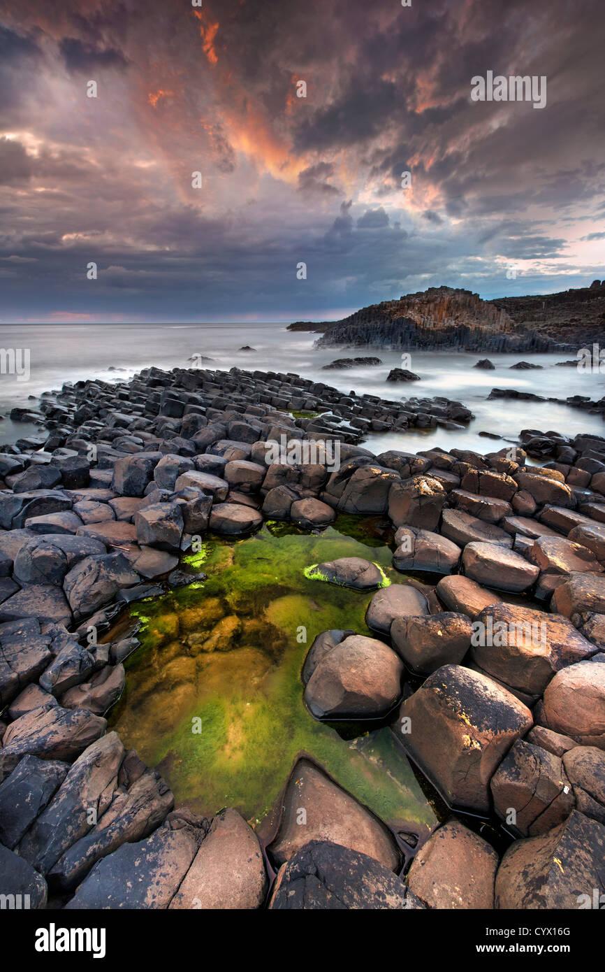 Il Giants Causeway al crepuscolo. L'Irlanda del Nord. Foto Stock
