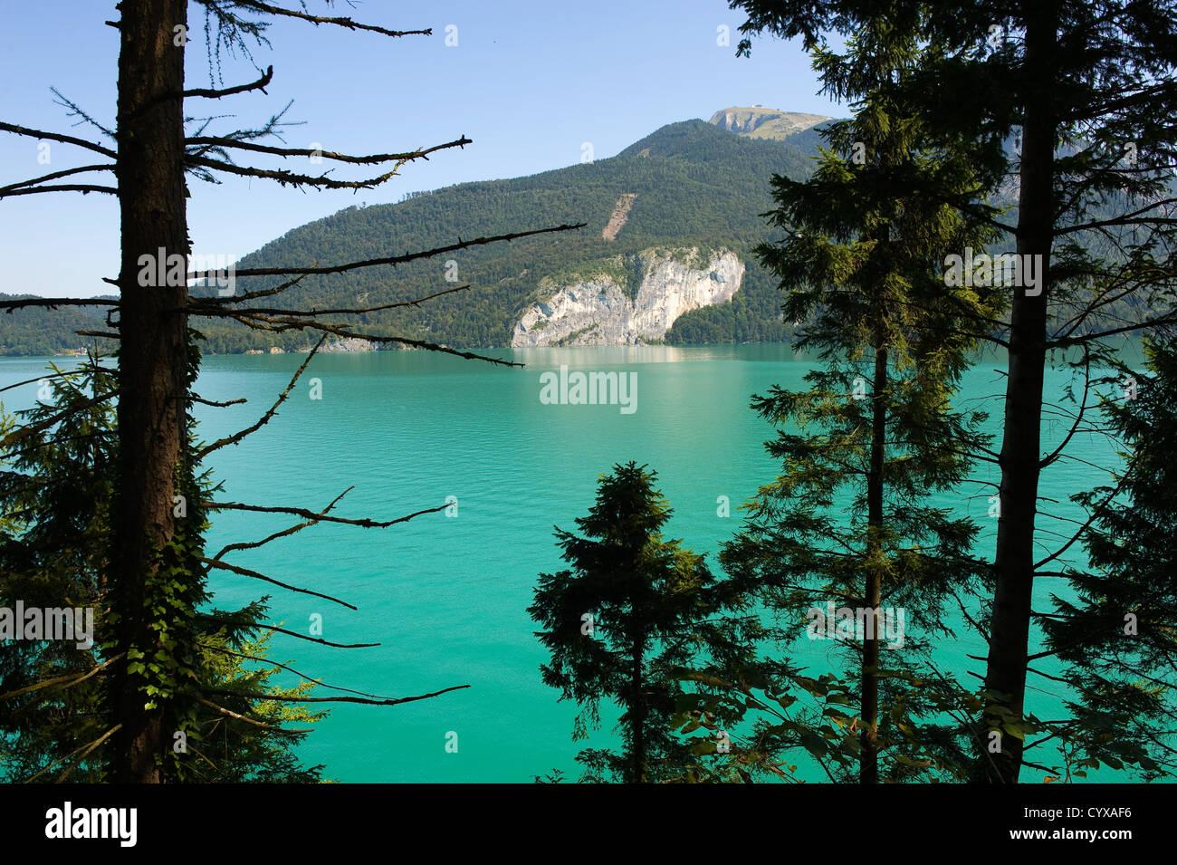 La chiara e turquise acqua del Wolfgangsee in Austia Immagini Stock