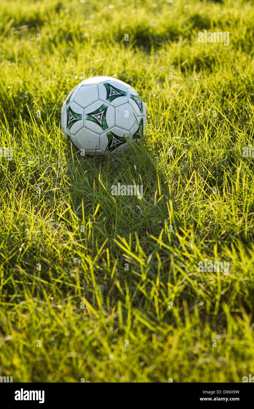 Pallone da calcio in erba soleggiato. Immagini Stock