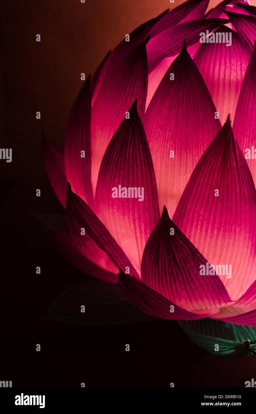 Chinese Lotus lanterna per metà autunno Festival in tonalità fredde Immagini Stock