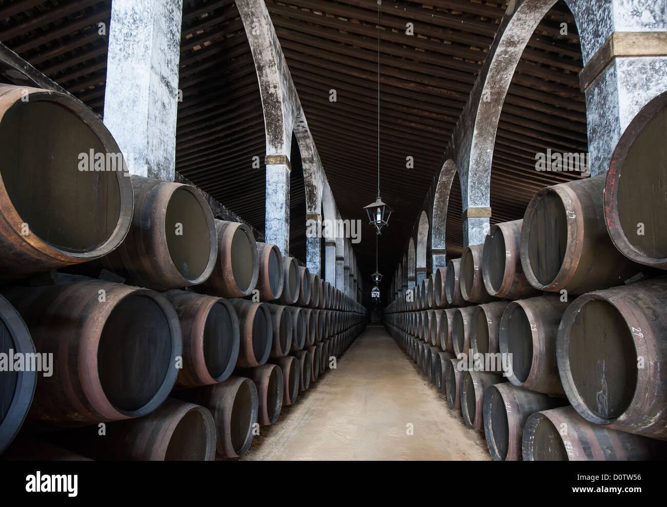 Sherry barili di Jerez bodega, Spagna Foto Stock
