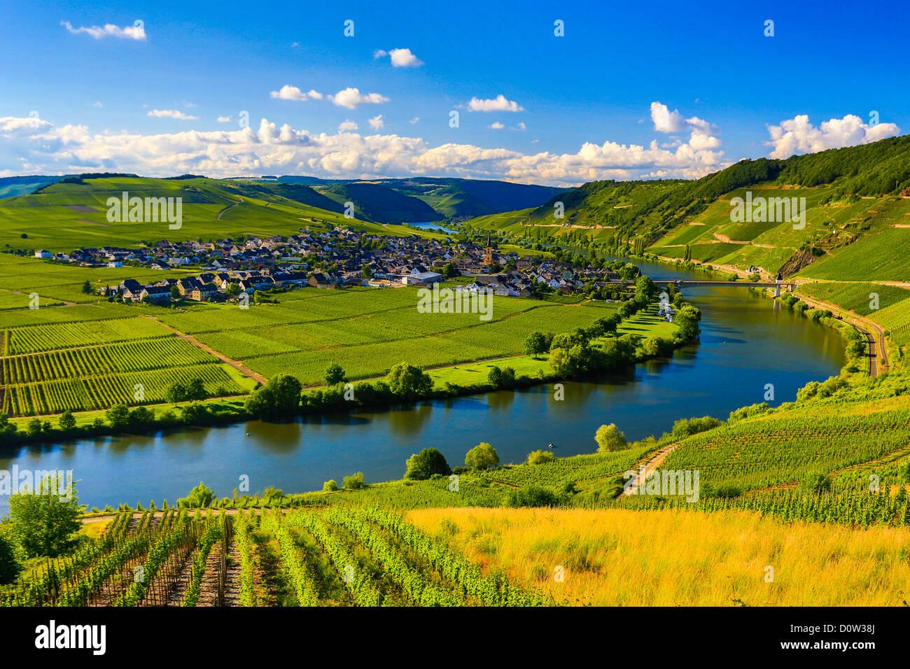 Germania, Europa, viaggi, Moseltal, della Mosella, Trittenheim, Moselle, Fiume, vigneti, agricoltura, piegare, nuvole, Immagini Stock