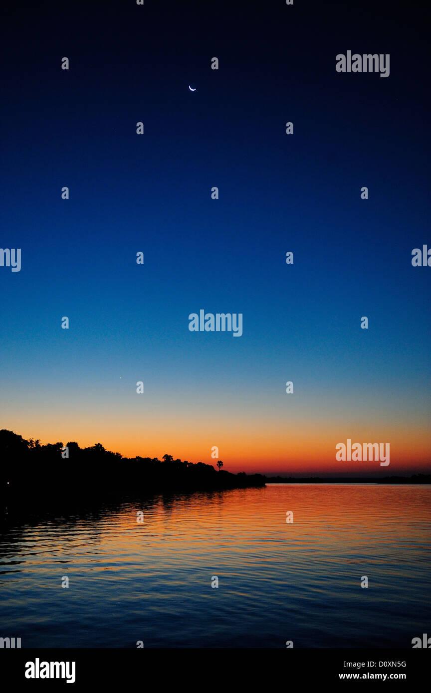 Africa, Zimbabwe, Zambezi River, Sud Africa, crepuscolo, palm, Crescent Moon, notte, verticale Immagini Stock