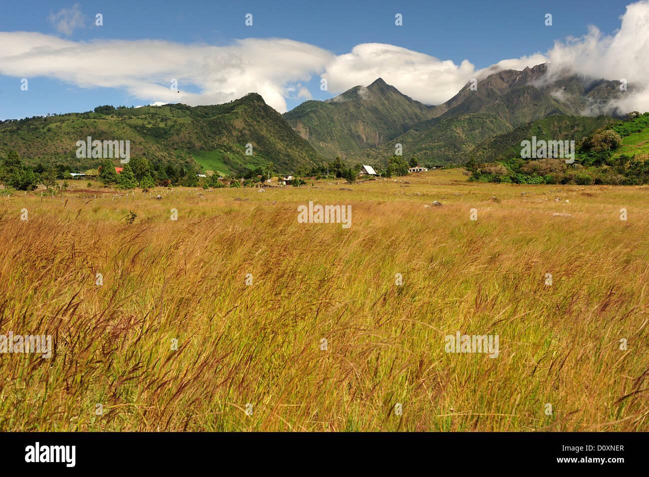 Paesaggio, Volcan Baru, Panama, America Centrale, campo Immagini Stock