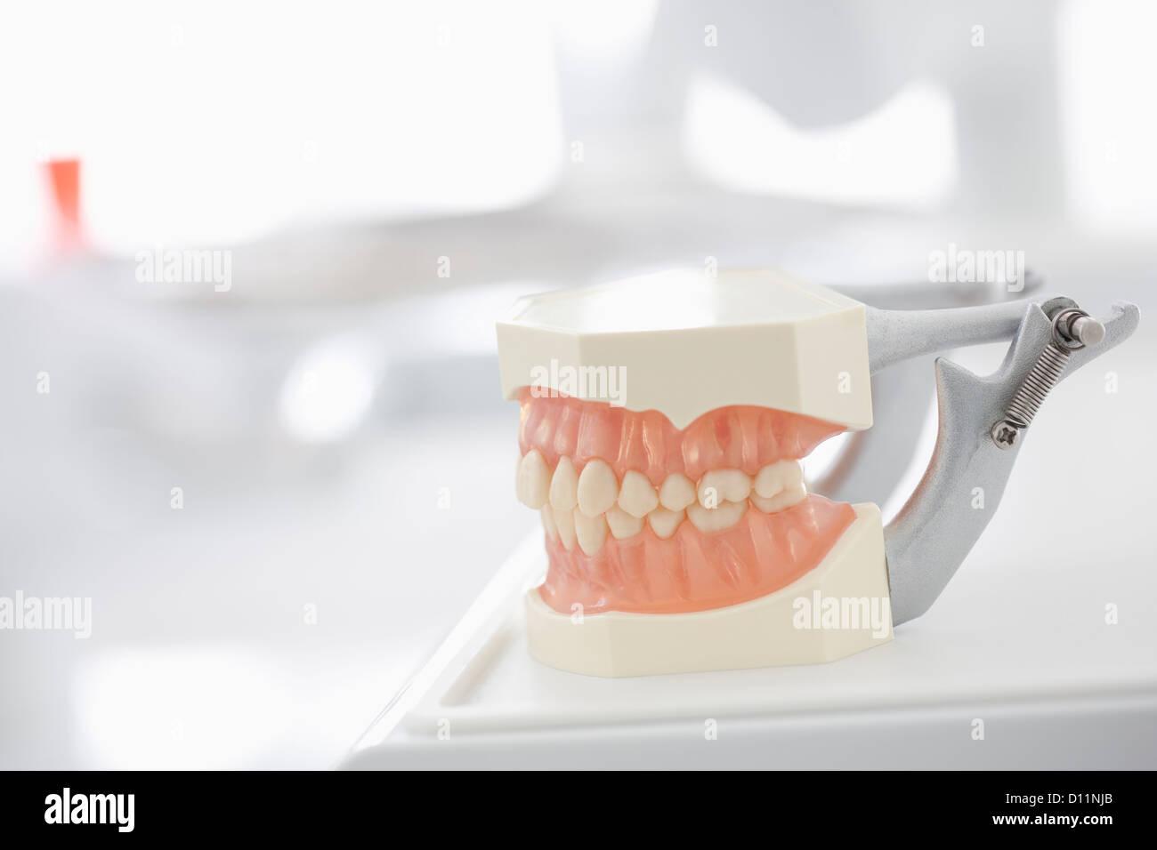 Germania, mostra le dentiere in studio dentistico Immagini Stock