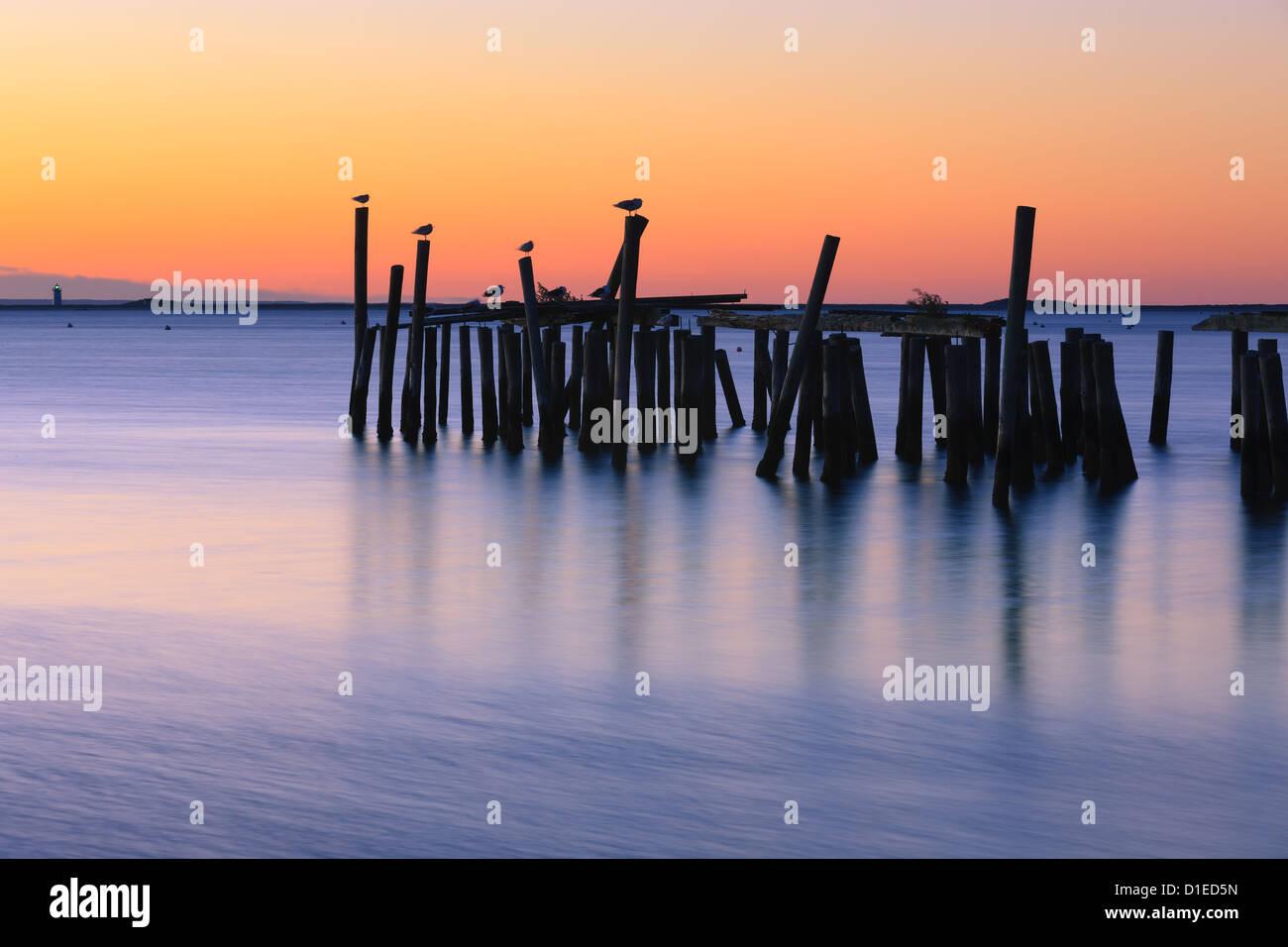 Sunrise sopra il vecchio jety in a Provincetown a nord di Cape Cod, Massachusetts Immagini Stock
