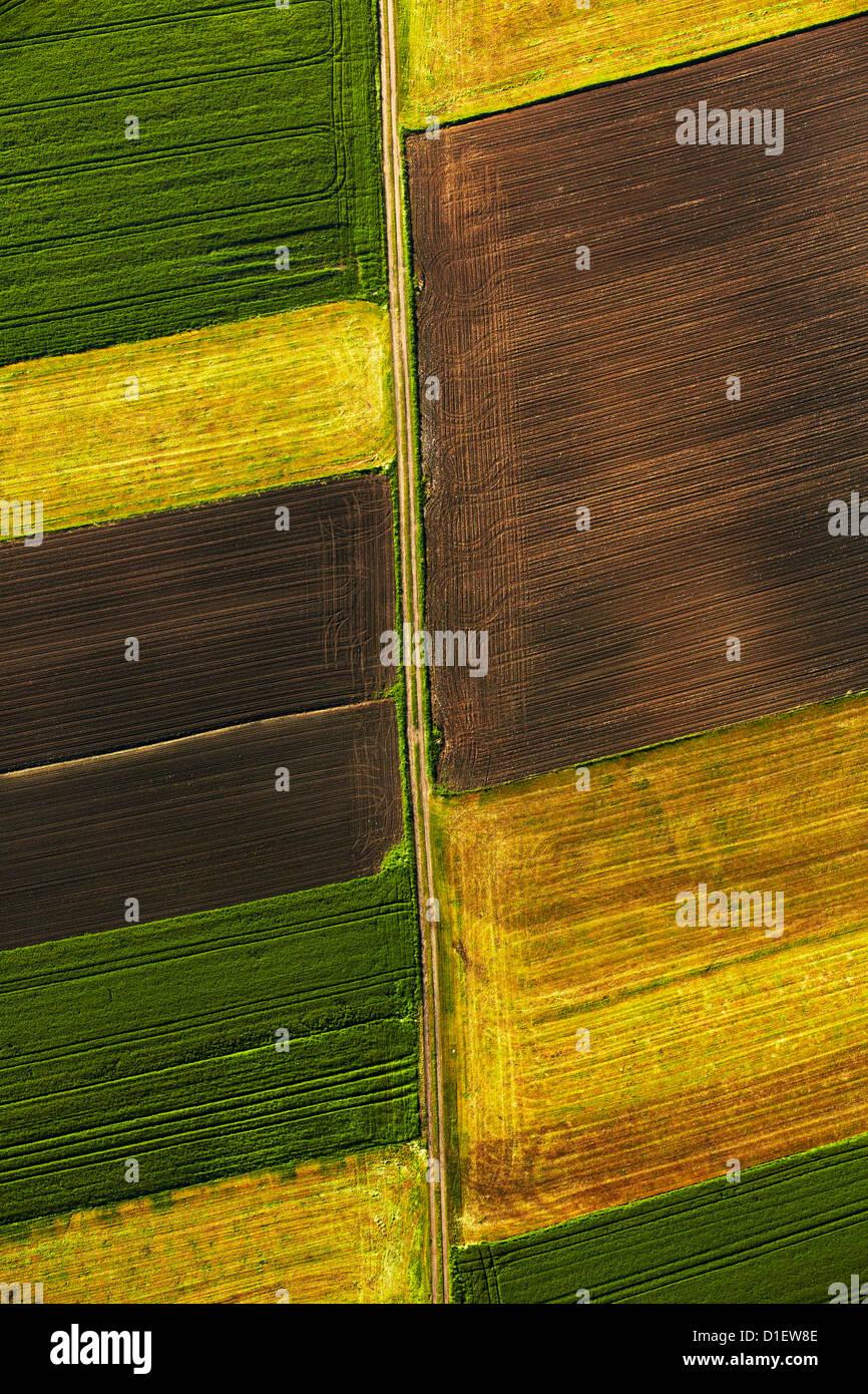 I campi colorati, Germania meridionale, vista aerea Immagini Stock