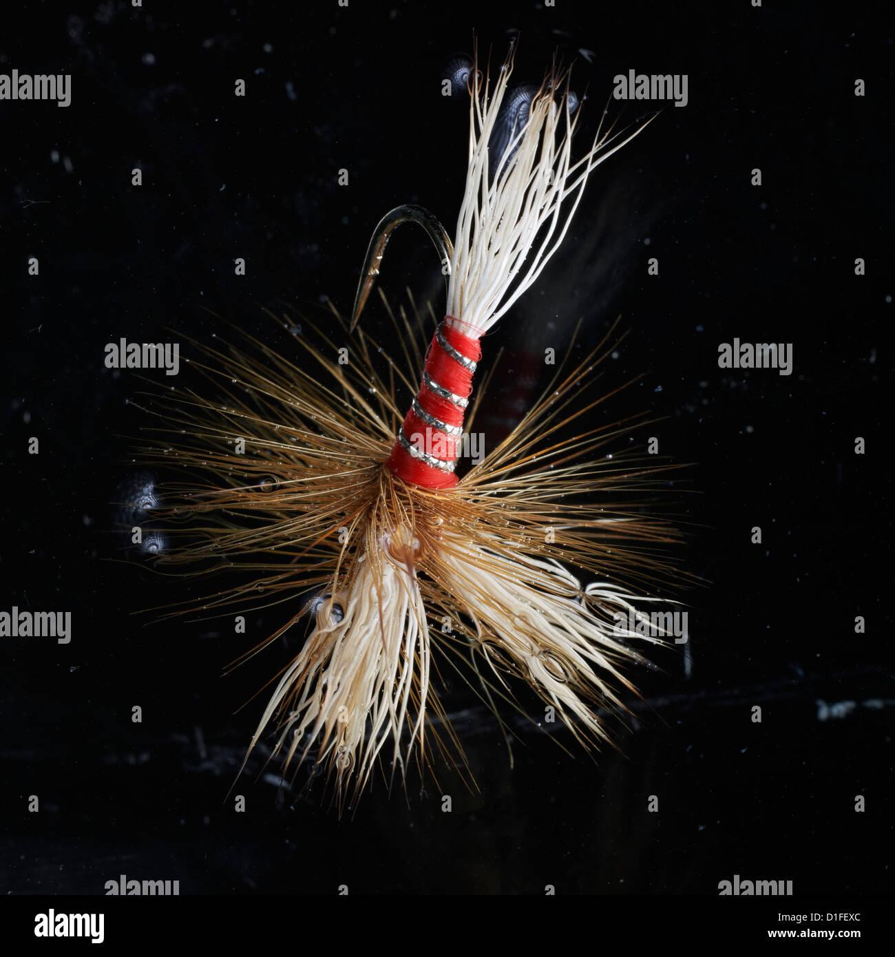 Wulff rosso Pesca artificiale fly utilizzato nella pesca sportiva in estrema vicino shot in acqua Immagini Stock