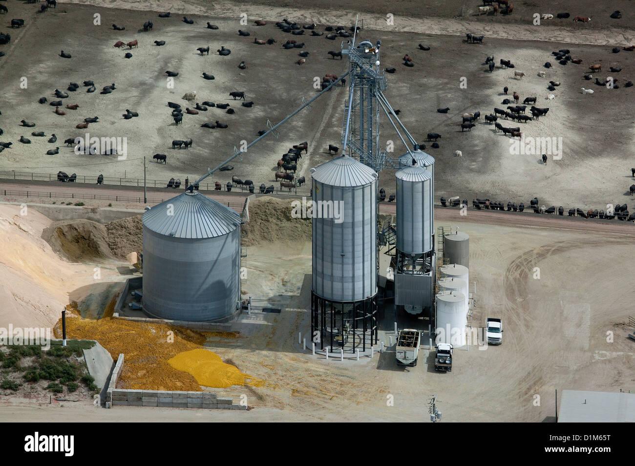 Fotografia aerea grano deposito bidoni bovini feedlot Nebraska Immagini Stock